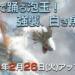 【Ver8.5】アップデート情報まとめ【MHXR】